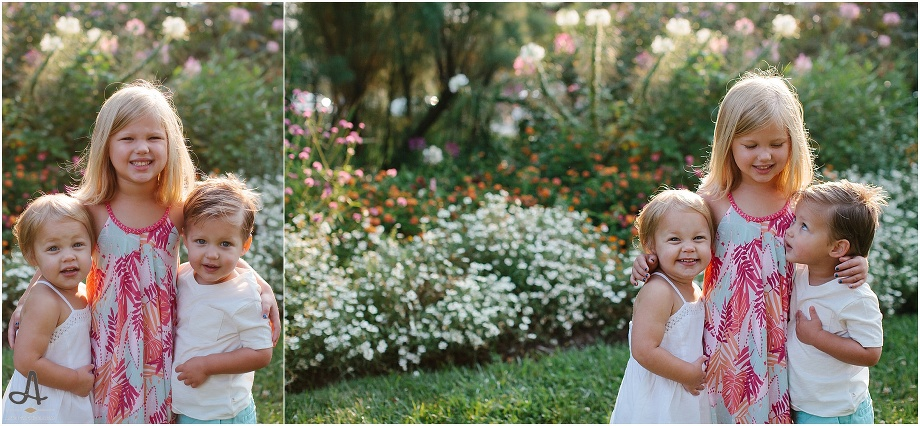 st. louis family photography